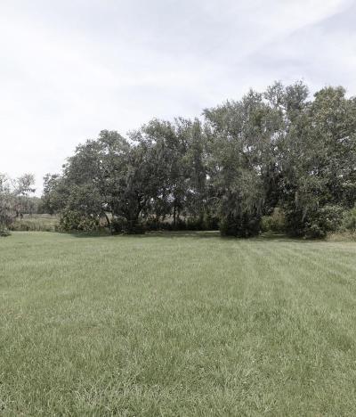 Residential Lots & Land For Sale: 2209 Arthur Gaillard Lane