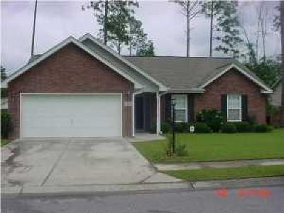 Summerville Single Family Home Contingent: 1308 Lantern Road