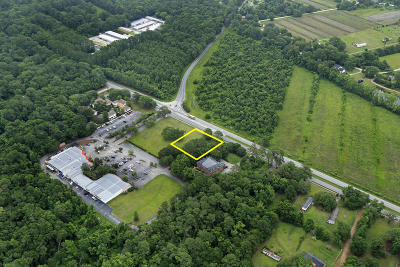 Johns Island Residential Lots & Land For Sale: Betsy Kerrison