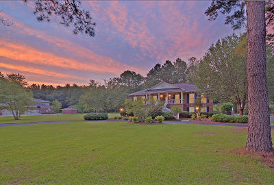 Summerville Single Family Home For Sale: 155 Old Winter Road