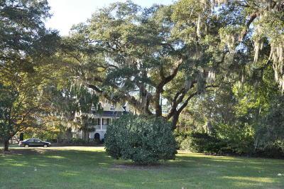 Residential Lots & Land For Sale: 2228 Arthur Gaillard Lane
