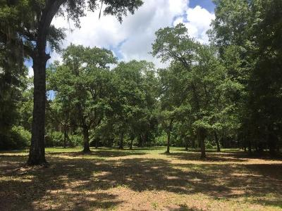 Wadmalaw Island Residential Lots & Land For Sale: 1418 Polly Point
