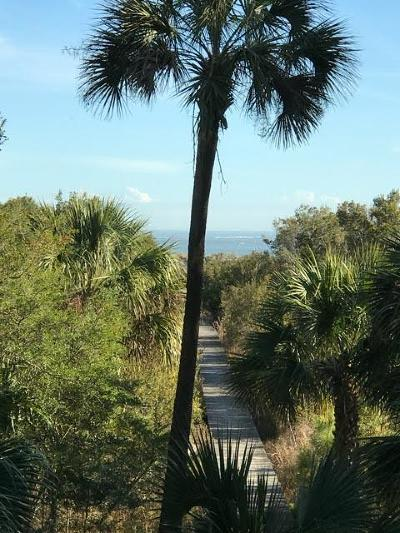 Dewees Island Residential Lots & Land Contingent: 243 Pelican Flight Drive #Lot 5