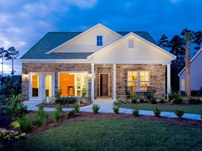 Charleston County Single Family Home For Sale: 17 Byrd Garden Road