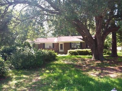 Charleston Single Family Home Contingent: 343 Cessna Avenue