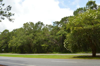 Johns Island Residential Lots & Land For Sale: 4346 Betsy Kerrison