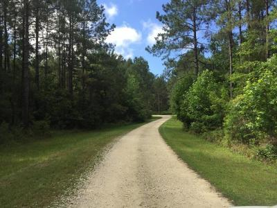 Residential Lots & Land For Sale: 7570 Seattle Slew Court