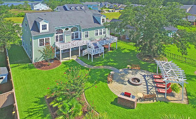 Charleston Single Family Home For Sale: 1029 Jervey Point Road