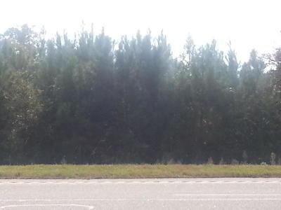 Residential Lots & Land For Sale: N Highway 17