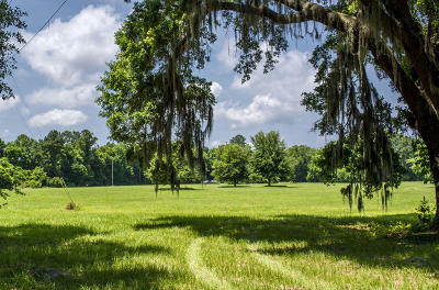 Edisto Island SC Residential Lots & Land For Sale: $194,900
