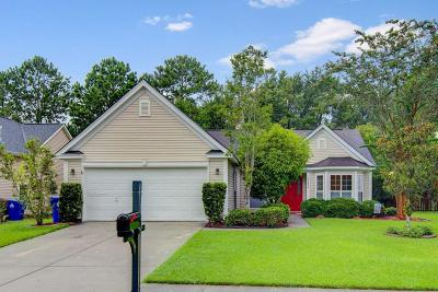 Mount Pleasant Single Family Home For Sale: 2152 Andover Way