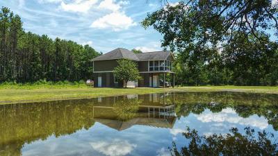Wadmalaw Island Single Family Home For Sale: 2208 Leadenwah Drive