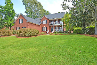 Goose Creek Single Family Home Contingent: 135 Loganberry Circle