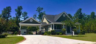 Walterboro Single Family Home Contingent: 87 Watershed Court