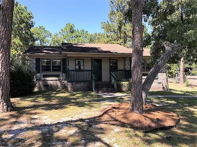 Walterboro Single Family Home For Sale: 271 Carolina Circle