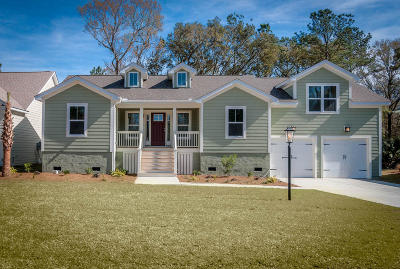 Johns Island Single Family Home Contingent: 3605 Majestic Drive