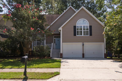 Single Family Home For Sale: 421 Bay Creek Drive