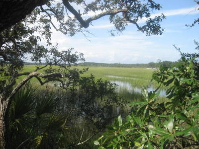 Edisto Island SC Residential Lots & Land For Sale: $138,500