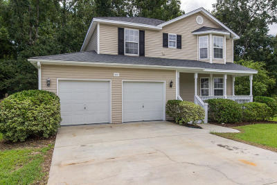 Single Family Home For Sale: 405 Stefan Drive