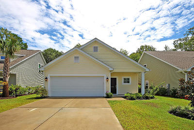 Mount Pleasant Single Family Home For Sale: 1533 Oldenburg Drive