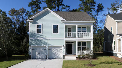 Summerville Single Family Home For Sale: 104 Elliott Creek Lane