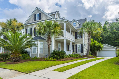 Goose Creek Single Family Home For Sale: 126 Cypress View Road