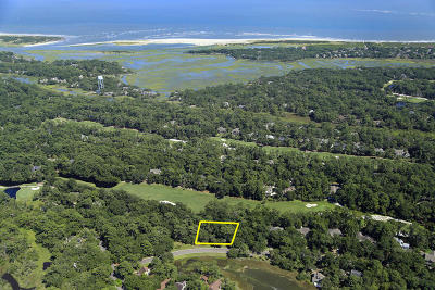 Seabrook Island Residential Lots & Land For Sale: 2483 Seabrook Island Road