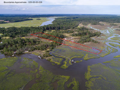 Edisto Island SC Residential Lots & Land For Sale: $175,000