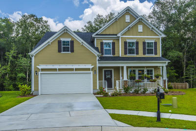 Summerville Single Family Home For Sale: 156 Daniels Ridge Drive