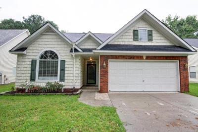 Mount Pleasant Single Family Home For Sale: 4017 Harleston Green Lane