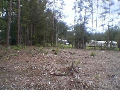 Residential Lots & Land Contingent: 109 St Germain Drive #Tr D