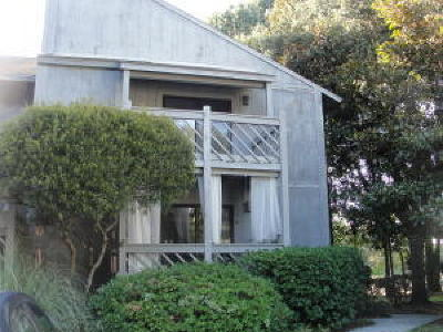 Charleston County Attached For Sale: 1713 Greystone Boulevard #37