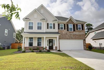 Johns Island Single Family Home For Sale: 3247 Arrow Arum Drive