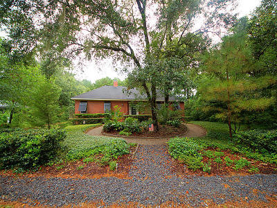 Charleston Single Family Home For Sale: 658 Sterling Drive