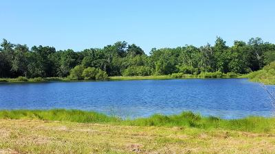 Johns Island Residential Lots & Land For Sale: 4169 Chisolm Road
