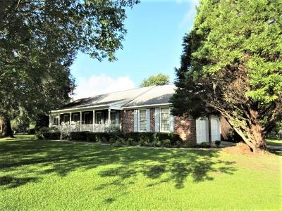 Charleston Single Family Home For Sale: 17 Still Shadow Drive