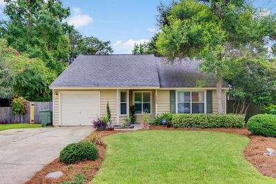 James Island Single Family Home For Sale: 1183 Shoreham Road