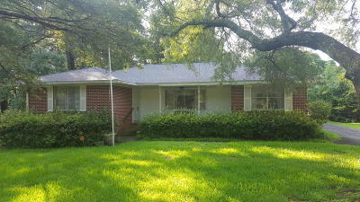 Charleston Single Family Home For Sale: 1425 Joy Avenue
