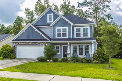 Johns Island Single Family Home For Sale: 2091 Chilhowee Drive