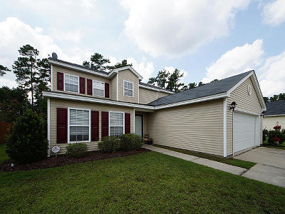 Summerville Single Family Home For Sale: 317 Deep River Road