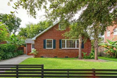 Charleston Single Family Home For Sale: 248 Grove Street