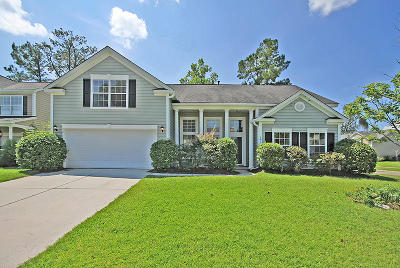Charleston Single Family Home For Sale: 201 Summer Rain Ct