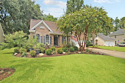 Mount Pleasant SC Single Family Home For Sale: $394,900