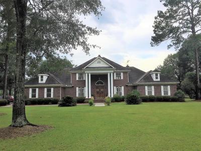 Walterboro Single Family Home For Sale: 2257 Mt Carmel Road