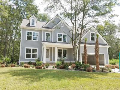 Single Family Home For Sale: 4019 Cascades Thrust