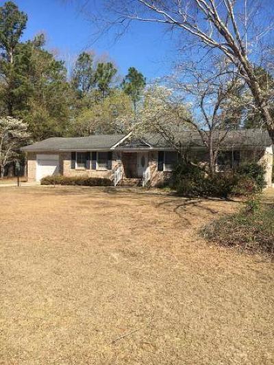 Walterboro Single Family Home For Sale: 166 Chamblee Road
