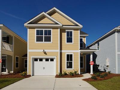 Charleston County Single Family Home For Sale: 234 Brambling Lane
