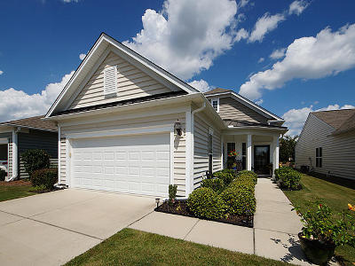 Summerville Single Family Home For Sale: 126 Billowing Sails Street