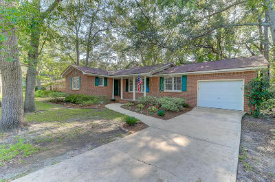 Charleston Single Family Home For Sale: 1718 Afton Avenue
