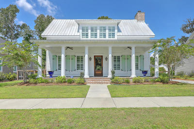 Johns Island Single Family Home For Sale: 3463 Acorn Drop Lane